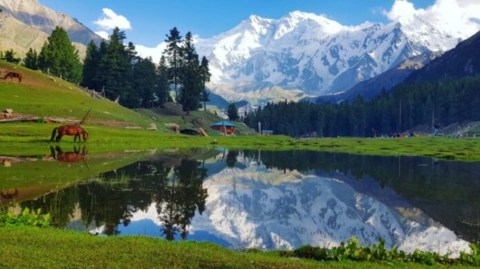 Things To Know About Fairy Meadows