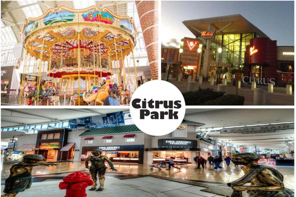citrus park mall movies